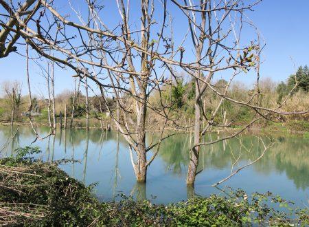Il Lago di Favale visto dal lato di Paterno