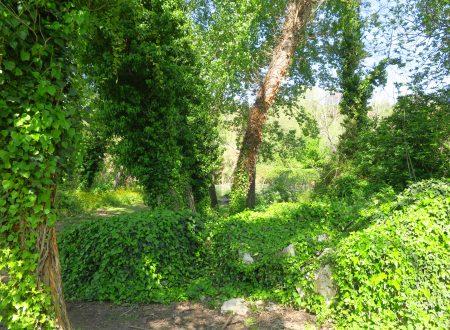 Risalendo il fiume dalla Grotta Polesini