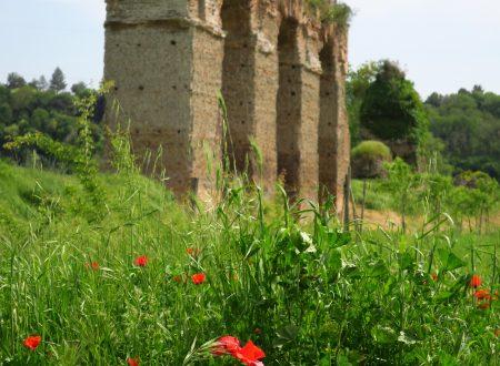 L'acquedotto romano presso gli Arci