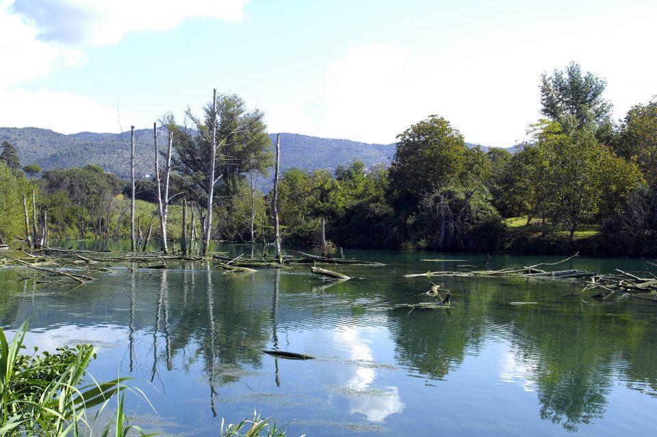 Il lago di favale dal punto di vista dellaniene